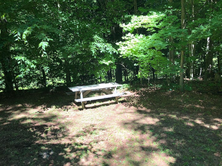 Secluded Campsite along Sterling Creek: Site A