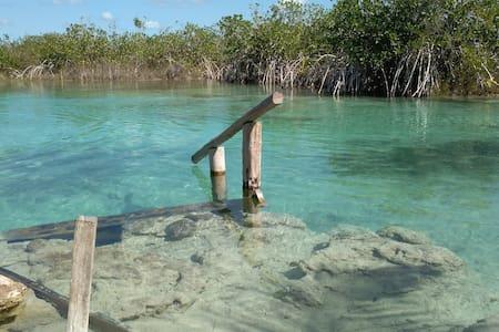 A pie del agua, El cenote de Xul-Ha