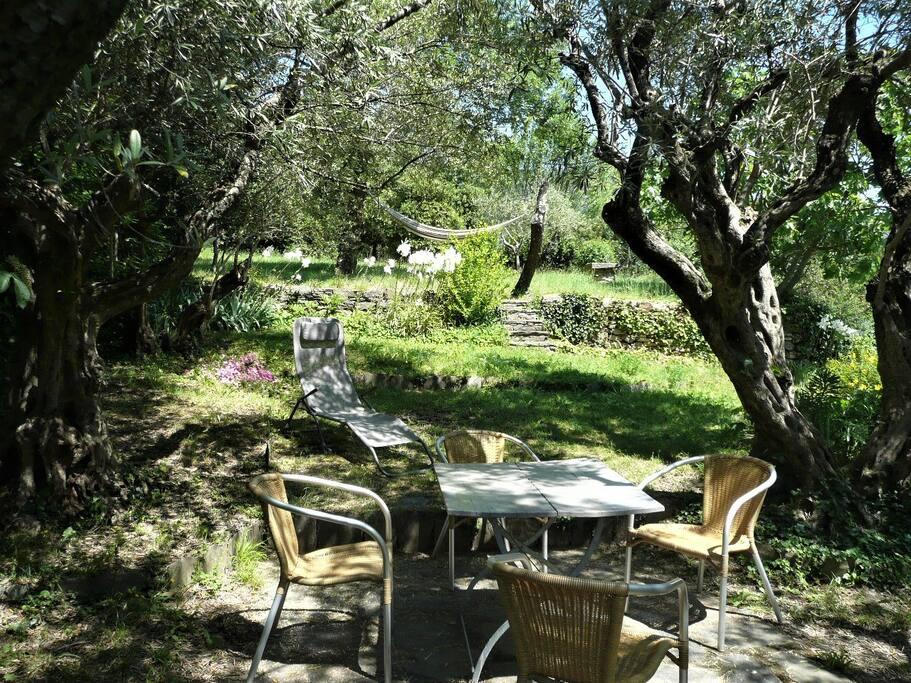 Essplatz unter der Olivenbäumen