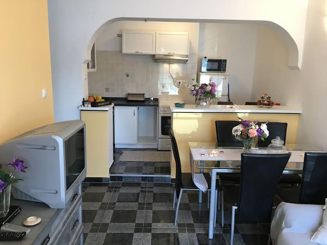 Two bedroom apartment with terrace Rijeka (A-13976-b)