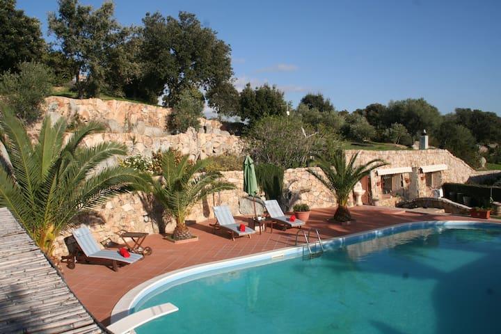 Villa Smeralda Vacanze 2 - Telti - Apartment