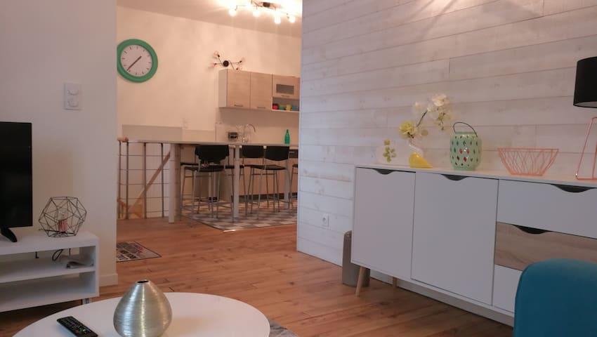 Logement entier 3ch centre ville - Lourdes - Huis