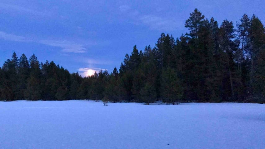 Moonrise Meadow Micro Ranch