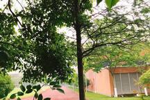 花园小区~这是大门口附近环境(。ì _ í。)泰晤士处处是唯美的风景,随手一拍你就是大片摄影师