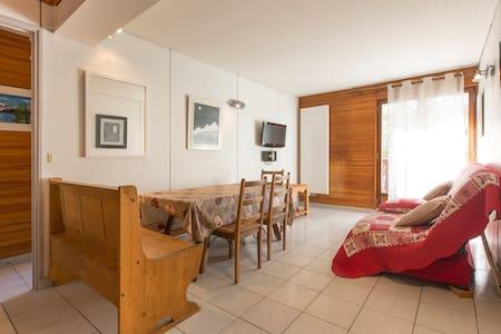 Appartement F3 Hyper centre les Carroz - Arâches-la-Frasse - 公寓