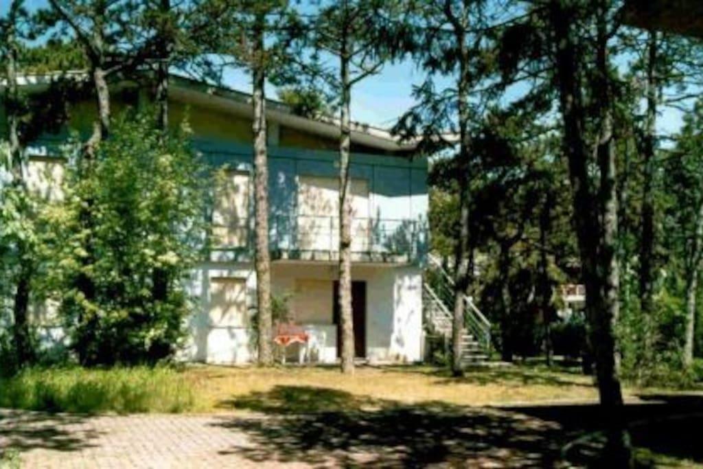 Villa Piave 2 Appartamenti In Affitto A Lignano