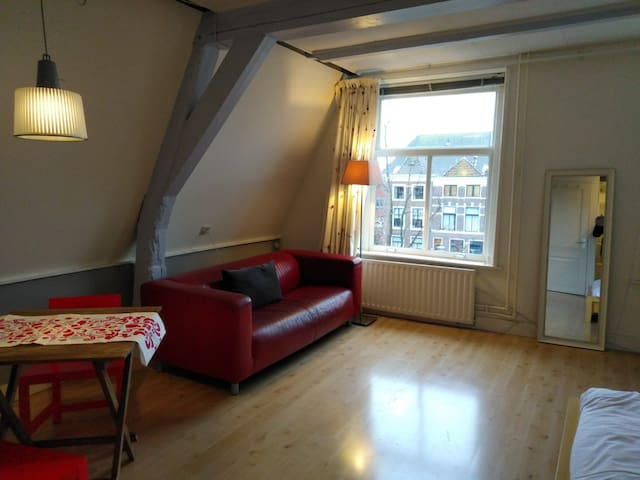 30m2 room with a beautiful view on a Leiden canal!