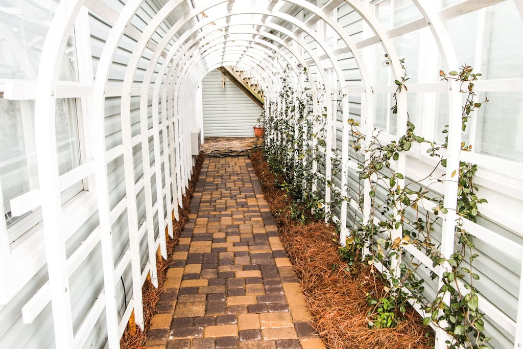 Walk through the arbor to get to Bungalow #3