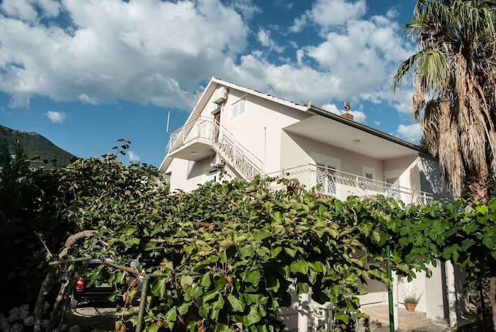 Vila Ksenija - Studio apartment in a green oasis