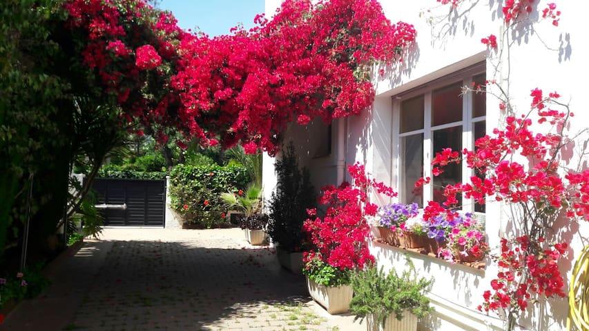 Habitaciones en casa chalet con gran jardín