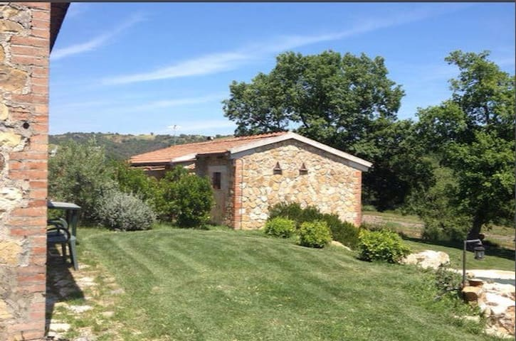 Magliano in Toscana - Apartament