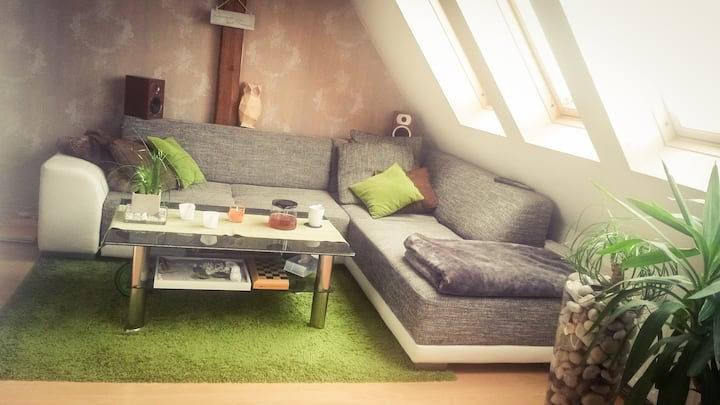 Spacious, cory apartment near centre & habour