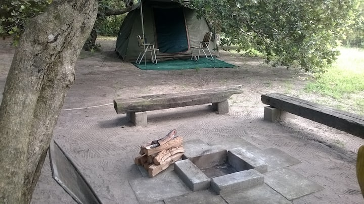 Galago Bush Camp
