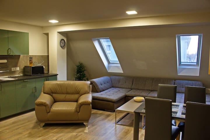 Mezonetový  apartmán ve středu Brna - Křenova