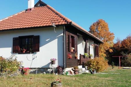 Sunny Mountain House # Ranch Zova Zlatibor