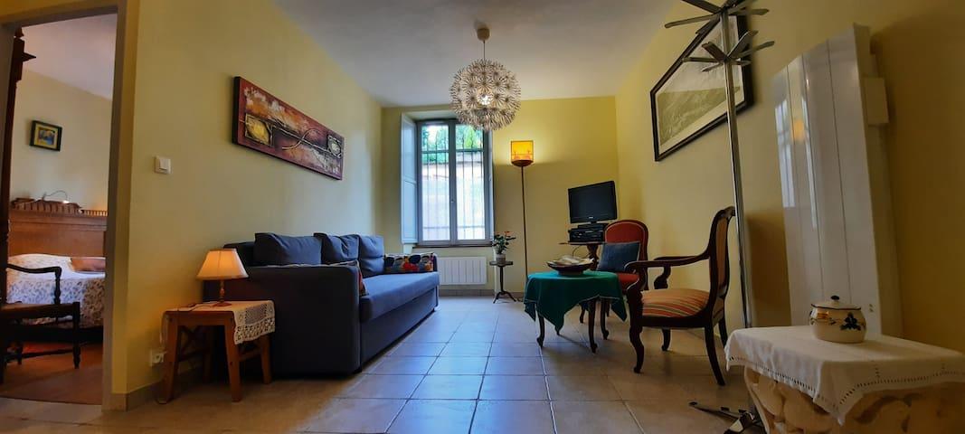 Grand salon au calme, sur cour, télévision lecteur DVD canapé lit deux places, fauteuils, table basse, bureau