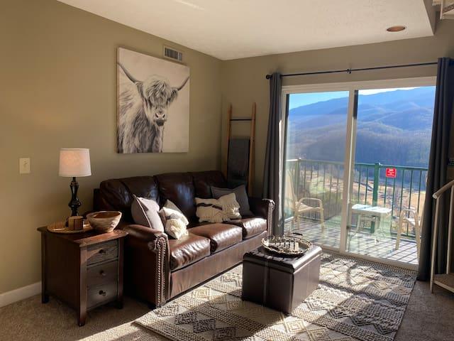 New sleeper sofa w/ gorgeous Smoky Mountain View- Shown is a winter view