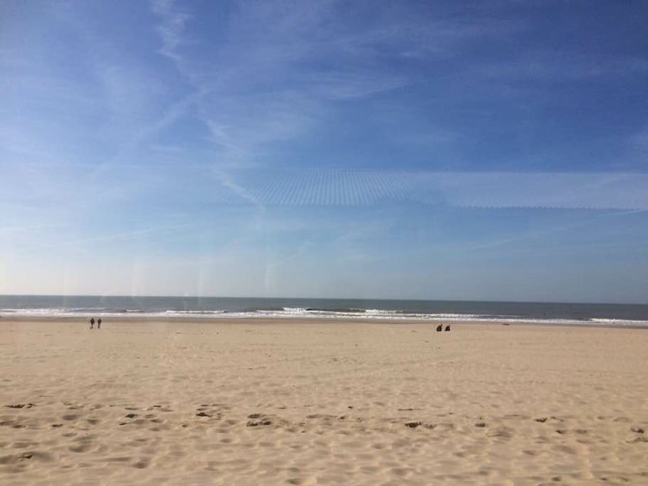 de kust tussen Kijkduin en Scheveningen