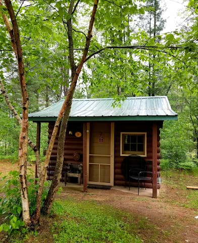 COZY CABIN w/ Queen bed near Manistee & Ludington