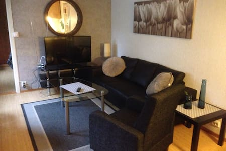 Bright and sunny room flat,  Kopervik