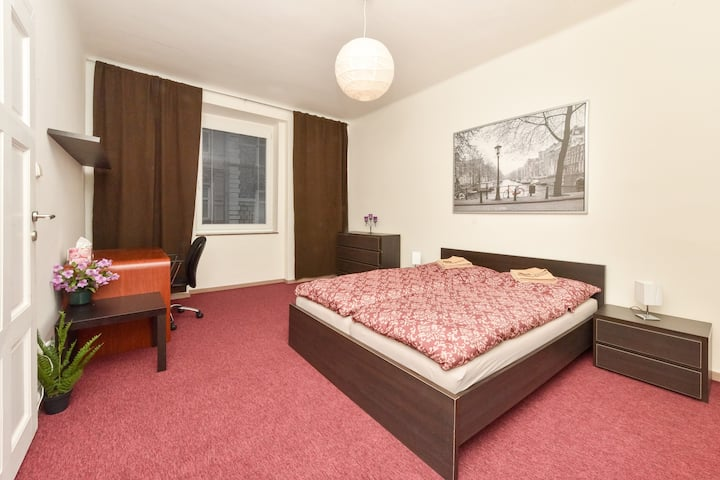 Fully equipped apartment just in the city center