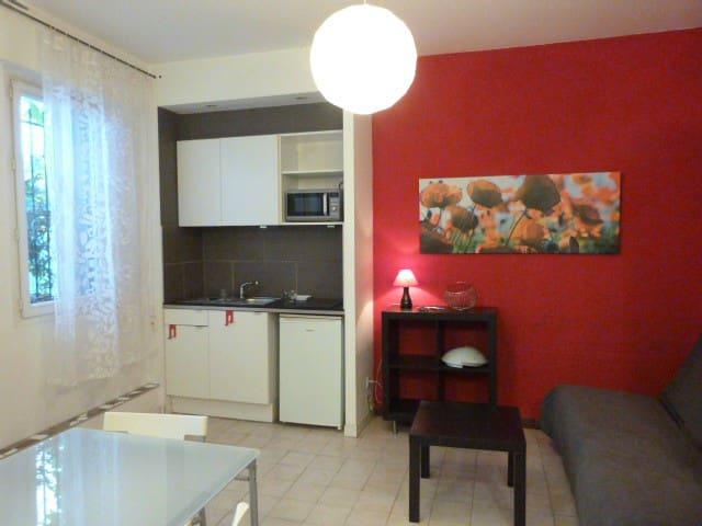 Montpellier Figuerolles appartement rue Haguenot
