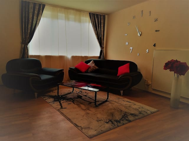 Luxuriös ausgestattetes City-Apartment ca 50qm