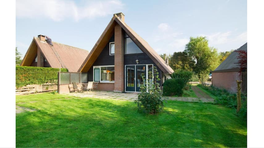 Nice bungalow 8 p. near Amsterdam and the beach(2)