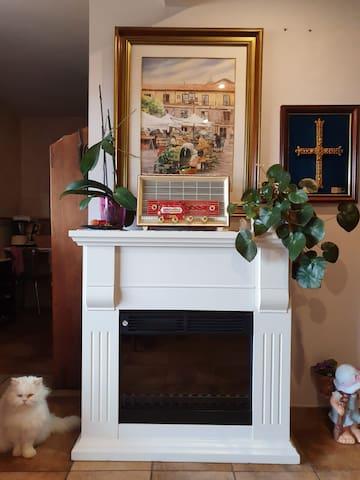 Chimenea eléctrica  en el salón de la Tv , y la gatita blanca persa Mimi al lado, como una figura de porcelana