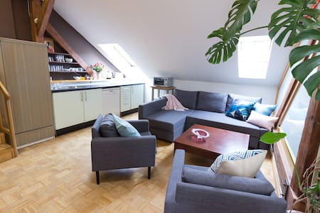 Stylish & spacious apartment in Old Town - プラハ - アパート