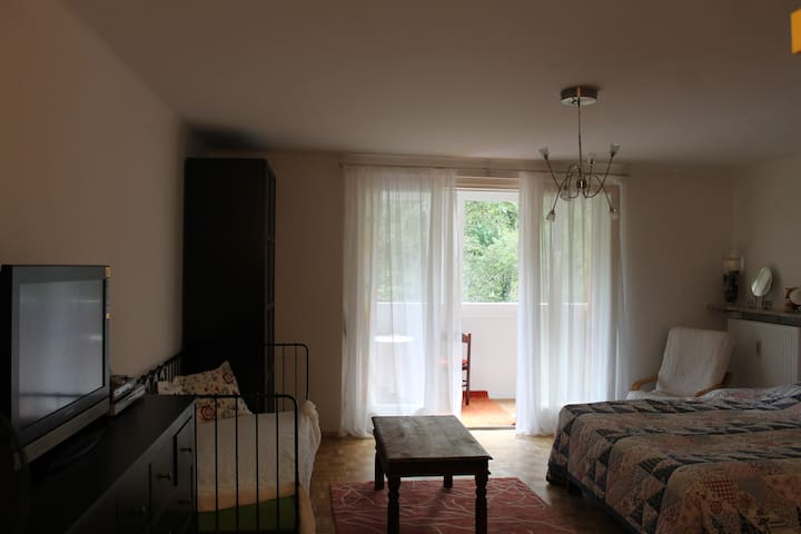 Cityapartment with balcony! - Baden bei Wien - Apartamento