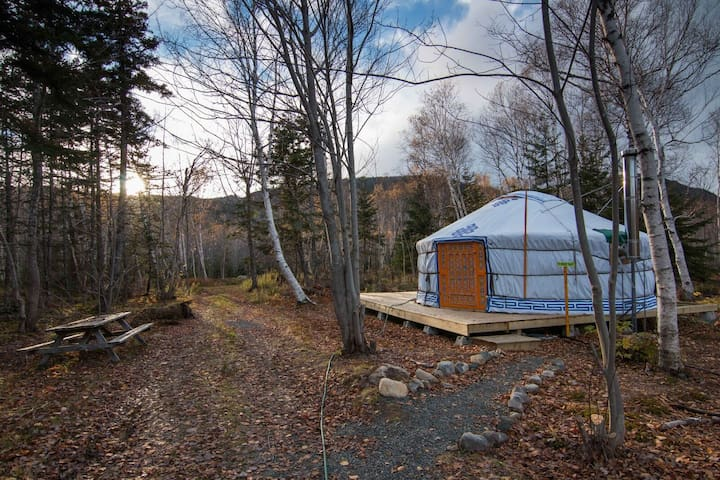 The Forest Yurt at Cabot Shores