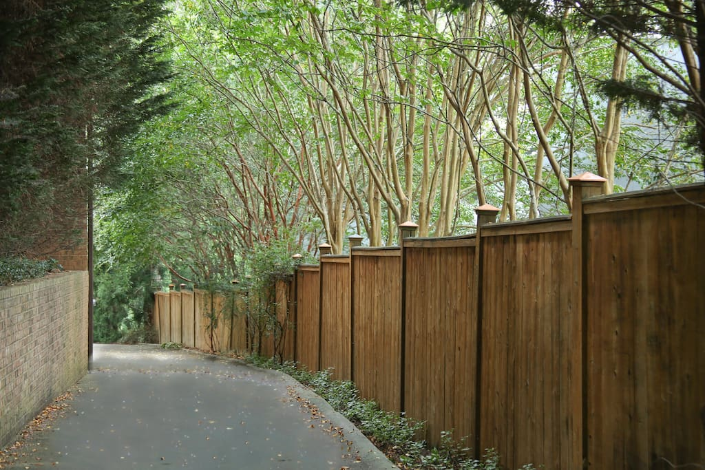Private driveway to the Buckhead Haven.