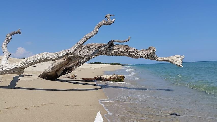 La Bergerie - Beach / River - SOLARO - Casa