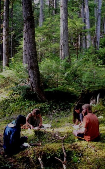 "In the Yasei Sanctuary Forest we practice and teach Yasei Shinrin Yoku or ""wild forest bathing"" pictured here are students studying the forest understory in order to better understand the natural world."