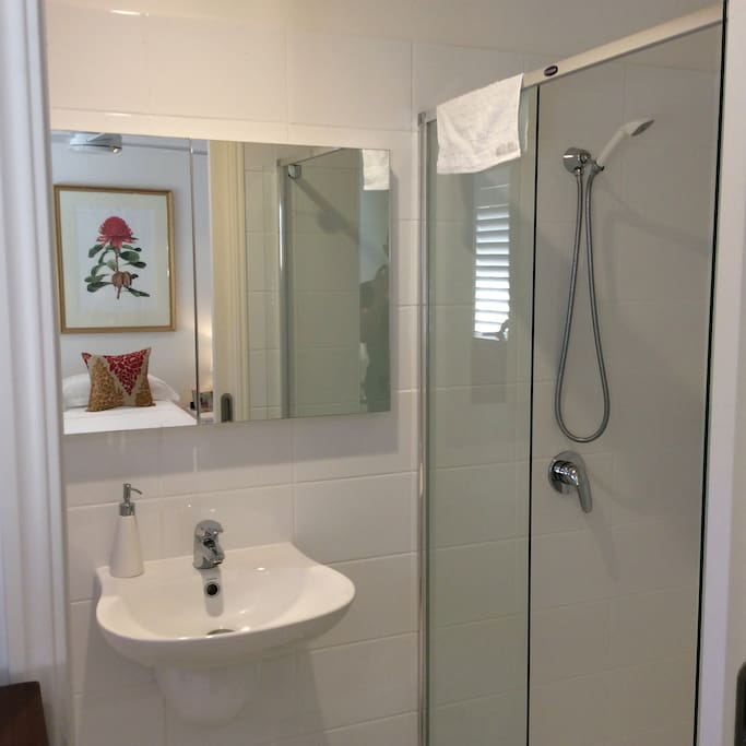 Guests' ensuite bathroom