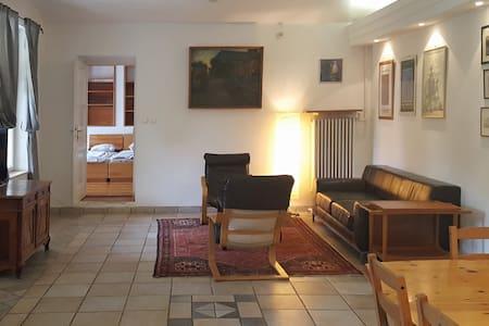 Family home, private garden, villa close to centre - Budapest - Villa