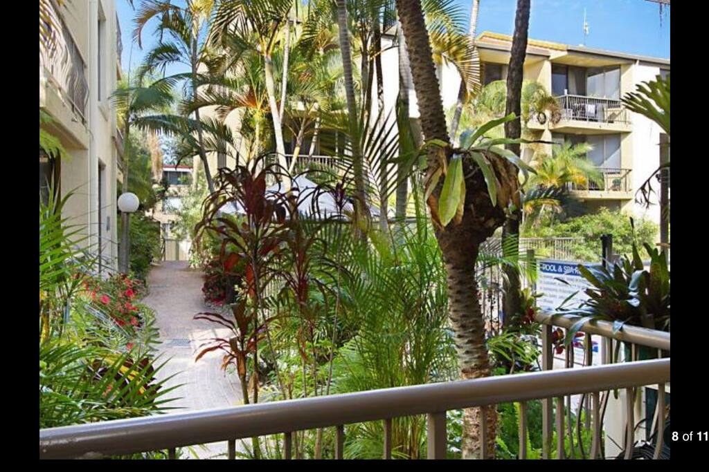 Tropical garden outlook in s  quietly tucked corner by the pool a short stroll to Burleigh esplade .. there's a whimsical invitation to the beach with the private gated access veiw ...  the magical gateway between worlds.. be drawn out for adventures day & night