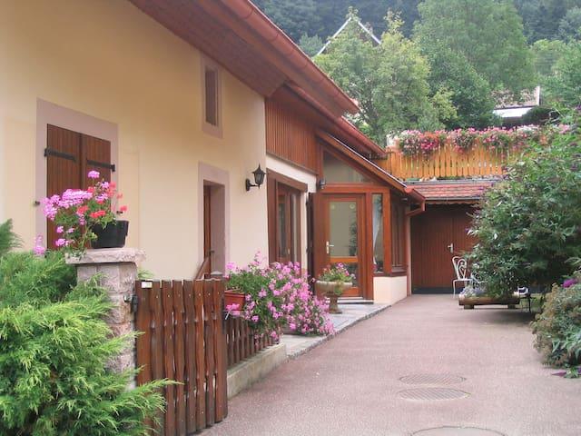 Gîte Les Gentianes - Breitenbach-Haut-Rhin - Leilighet