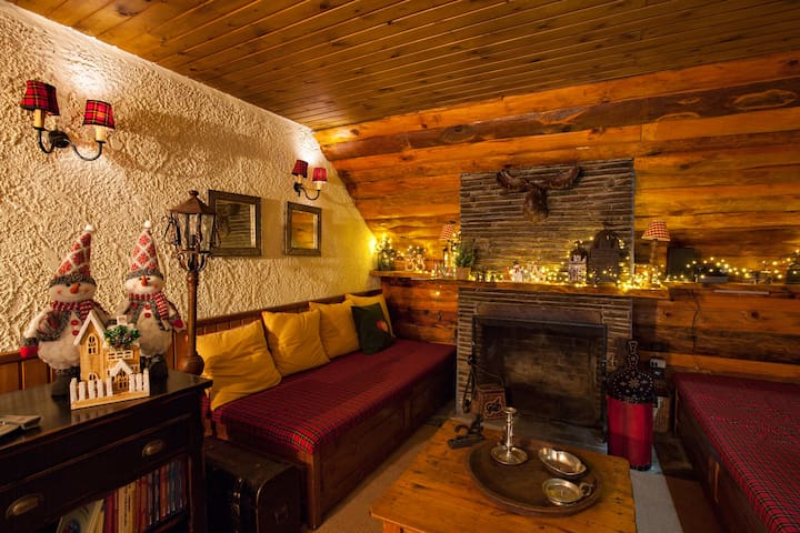 Dandy on the Hill in Agoriani |Chalet Erato|55sq.m