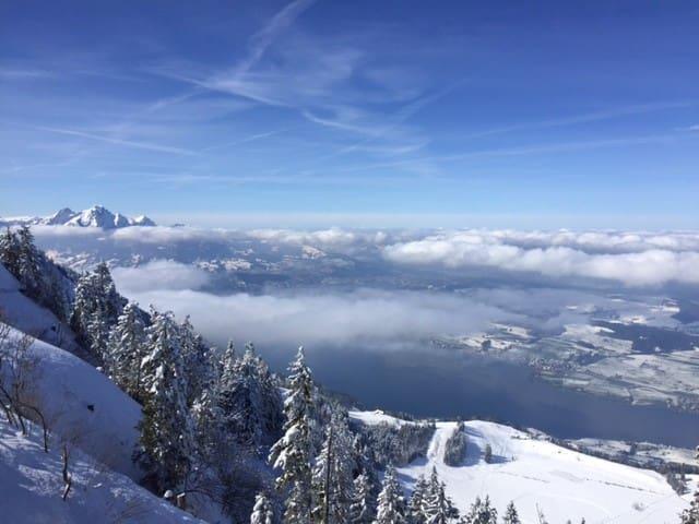 Rigi the place that likes nature
