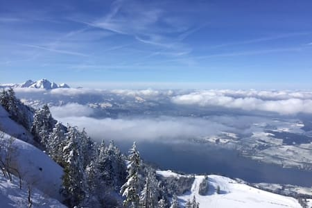 Rigi the place that likes nature - Arth