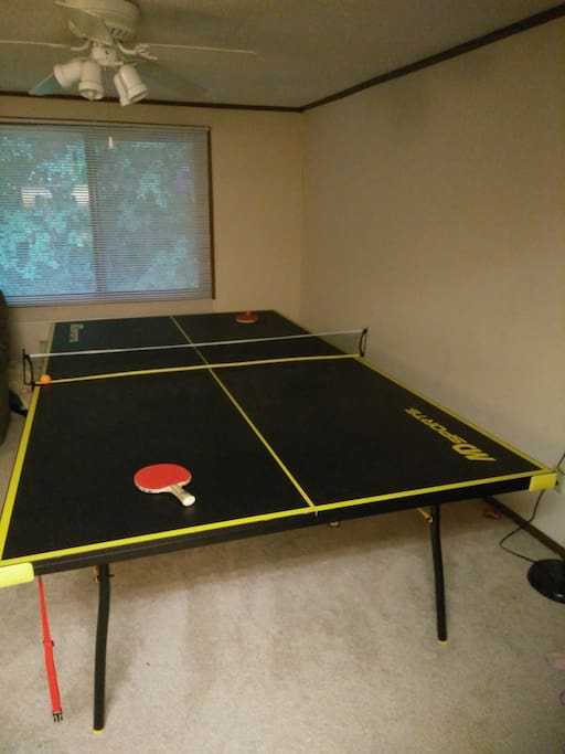 Master Bedroom/Ping Pong Room!