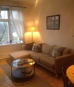 Cosy apartement next to NTNU and the city center - Trondheim - Huoneisto