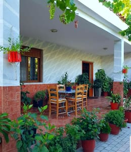 Cozy 1 bedroom apartment with a Patio