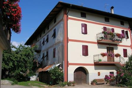 Casa AlpeAnaunia - la vacanza sull'Alpe !! - Romeno - อพาร์ทเมนท์