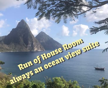 Ocean View Suite - Run of the House - Best Price!