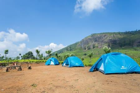 17 C Camping Munnar - Idukki - Teltta