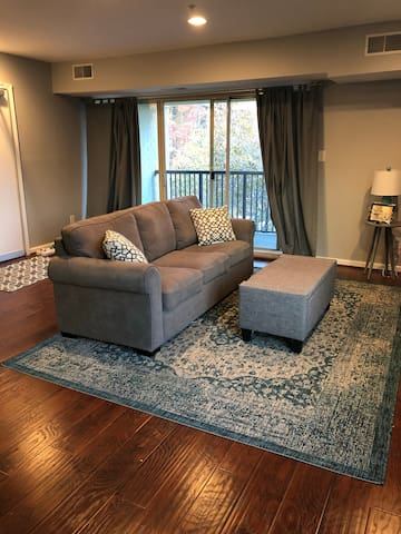 1B Annapolis Condo- Steps from Water and Downtown