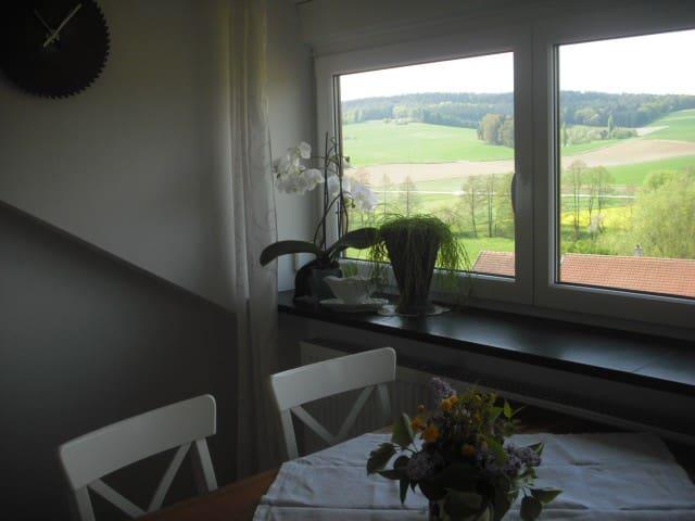 Ferienhof Bimesmeier (Triftern), Ferienwohnung 3 (75qm) mit Panoramafenster und Küchenzeile